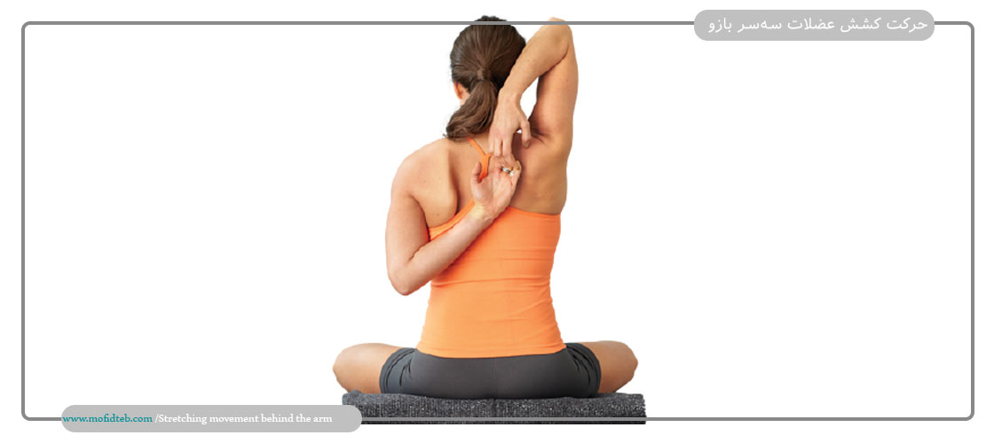 حرکت کشش عضلات سهسر بازو